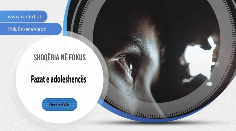 SHOQERIA NE FOKUS   04 Fazat e adoleshences pj 2