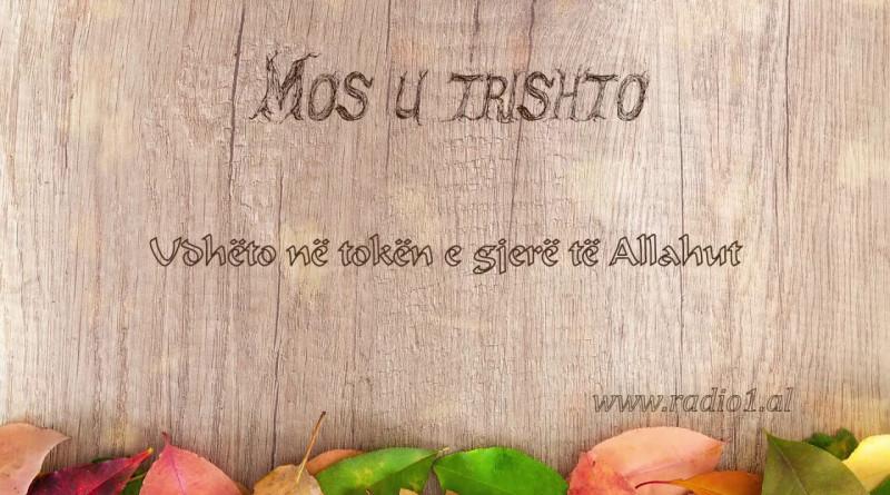 Mos u Trishto    Udheto ne token e gjere te Allahut 22