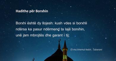 Borxhi 670